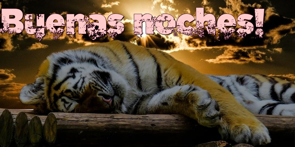 Felicitaciones de buenas noches - Buenas noches!