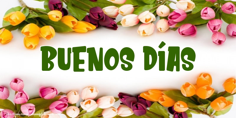 Felicitaciones de buenas tardes - Buenos Días