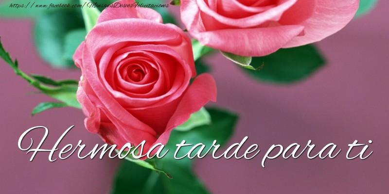 Buenas Tardes Amig@s Buenastardes-908