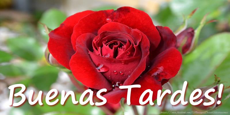 Felicitaciones de buenas tardes - Buenas Tardes!
