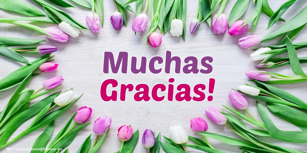 Felicitaciones de gracias - Muchas Gracias!