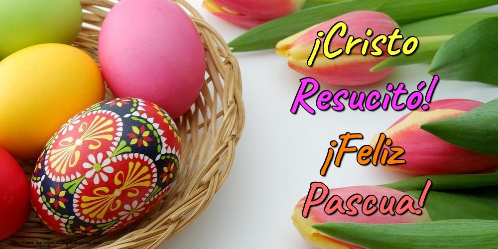 Felicitaciones de pascua - ¡Cristo Resucitó! ¡Feliz Pascua!