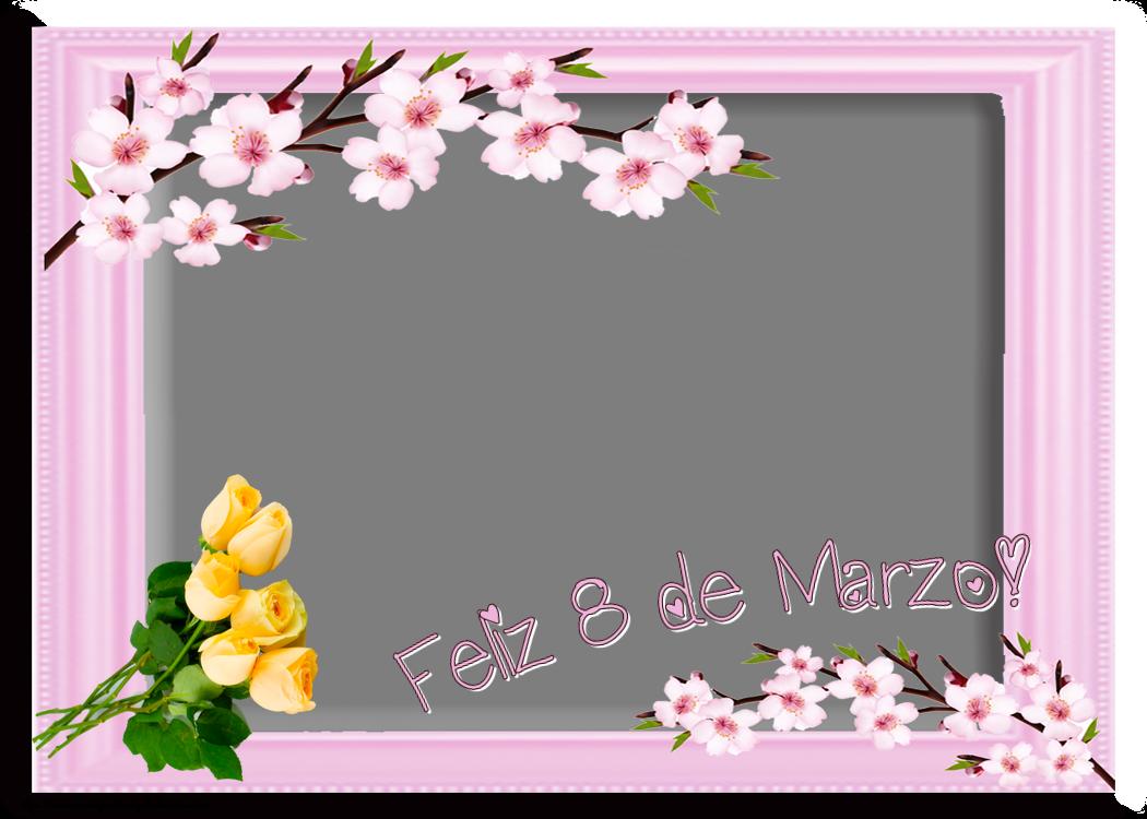 Felicitaciones Personalizadas para el día de la mujer - ¡Feliz 8 de Marzo! - Marco de foto