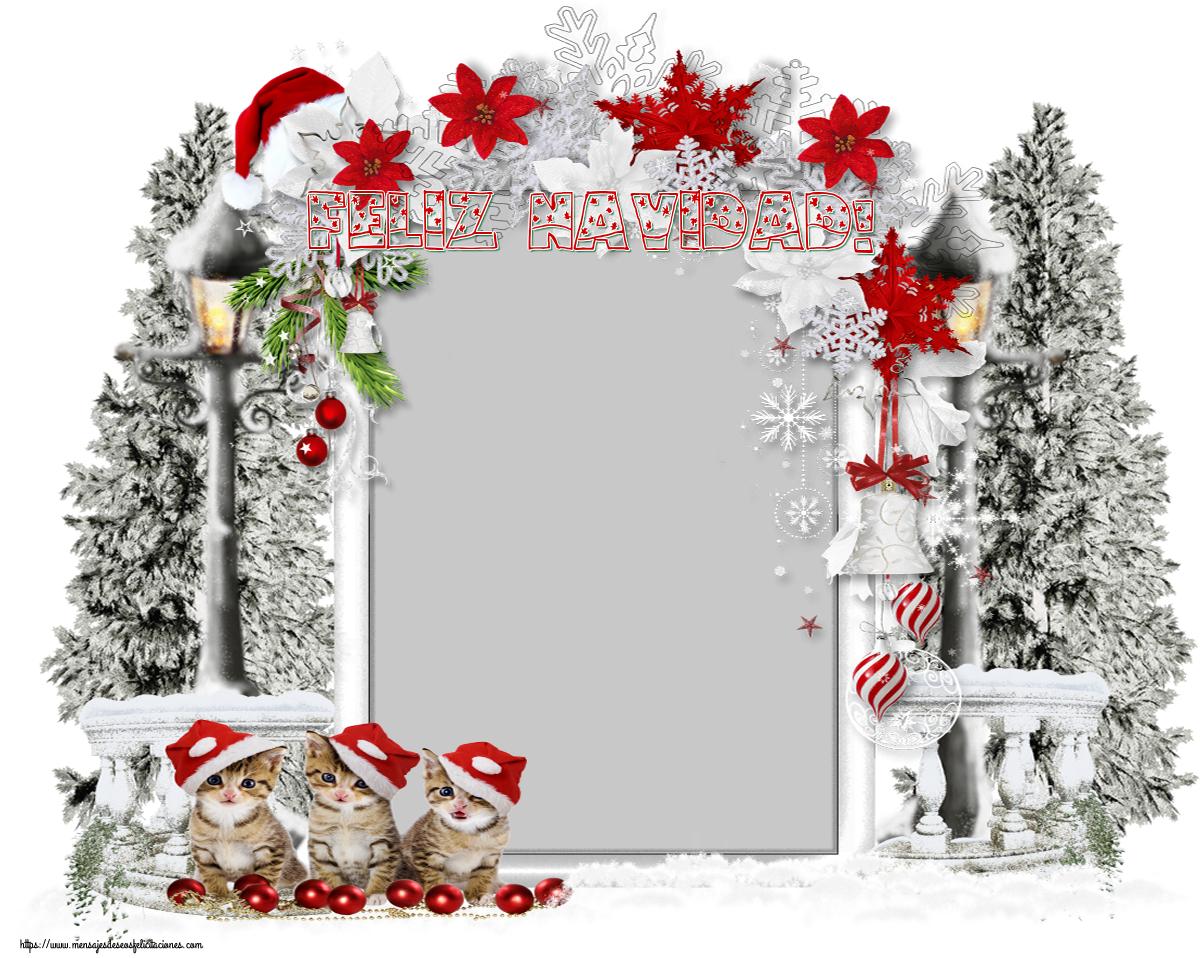 Felicitaciones Personalizadas de Navidad - Feliz Navidad! - Marco de foto de Navidad