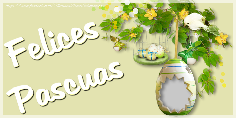 Felicitaciones Personalizadas de pascua - Felices Pascuas