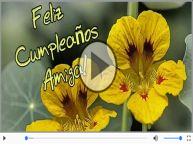 Feliz Cumpleaños!It's your birthday!